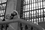 New York, New York: MorePhotos